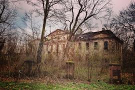 Opuszczony pałac rodu von Kospoth, Brzezinka