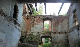 Ruiny dworu, studzieniec