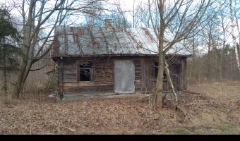 Opuszczony Dom, Ogrodniki,