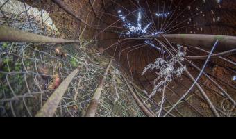 Opuszczona gigantyczna nawiedzona truskawka w środku lasu