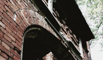 Ruiny negotyckiej bramy, morysin
