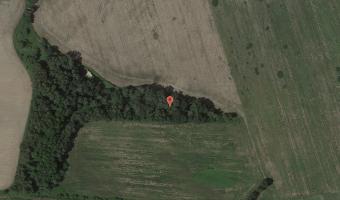 R116b i Sonderwerk, Nieborowice,