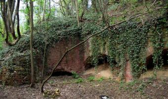 Ruiny fortu ćwiczegnego, Szczecinn,