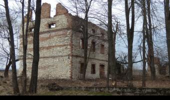 Ruiny Młynu, Przyłęk,