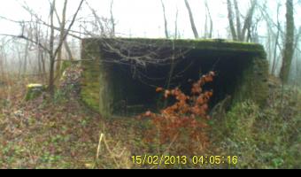 12 DROP - bunkry, Zimna Wódka,