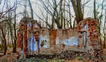 Stary cmentarz, dębowa Łęka