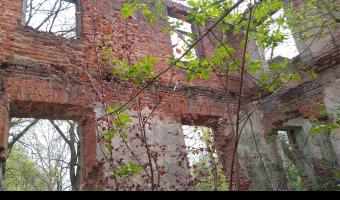 Ruiny pałacu Łubieńskich, Okuniew,