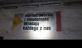"""Biurowiec i """"syntetyki"""" NFN Odra,"""
