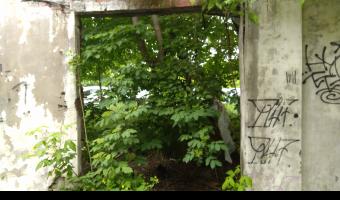 opuszczony dom , warszawa,