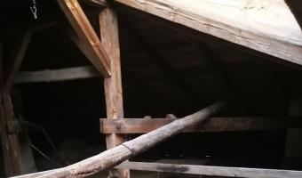Opuszczony sierociniec, wierzchucinek