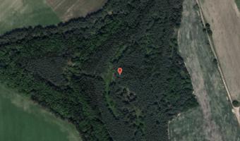 Fort Koroszczyn, Koroszczyn,