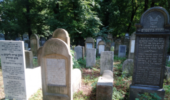 Stary cmentarz żydowski w krakowie