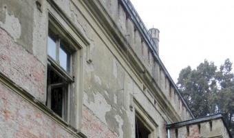 Pałac z x i x-wieku., dreżewo