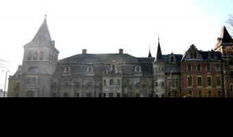 Pałac donnersmarcków, krowiarki